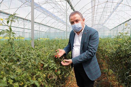 Başkan Böcek Serik'te üreticileri ziyaret etti